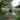 Братская могила участников гражданской войны, погибших в борьбе за власть Советов, Мартыновский
