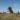 """Минометная установка """"Катюша"""", установленная в честь воинов частей Гвардейских минометов, с. Цаца"""
