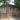 Дом, в котором в период Сталинградской битвы находился штаб Юго-Западного фронта, г. Серафимович, ул. Миронова, 15