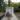 Братская могила участников гражданской войны, погибших в борьбе за власть Советов, Медведевский
