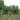 Братская могила советских летчиков И.Н. Дворецкого и Г.П. Солодовникова, погибших в период Сталинградской битвы, Водопьяново