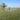 Братская могила летчиков Агафонова и Доможилова, погибших в авиационной катастрофе в период Сталинградской битвы, п. Вишневка