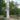 Братская могила участников гражданской войны, Жирновск, Комсомольский парк